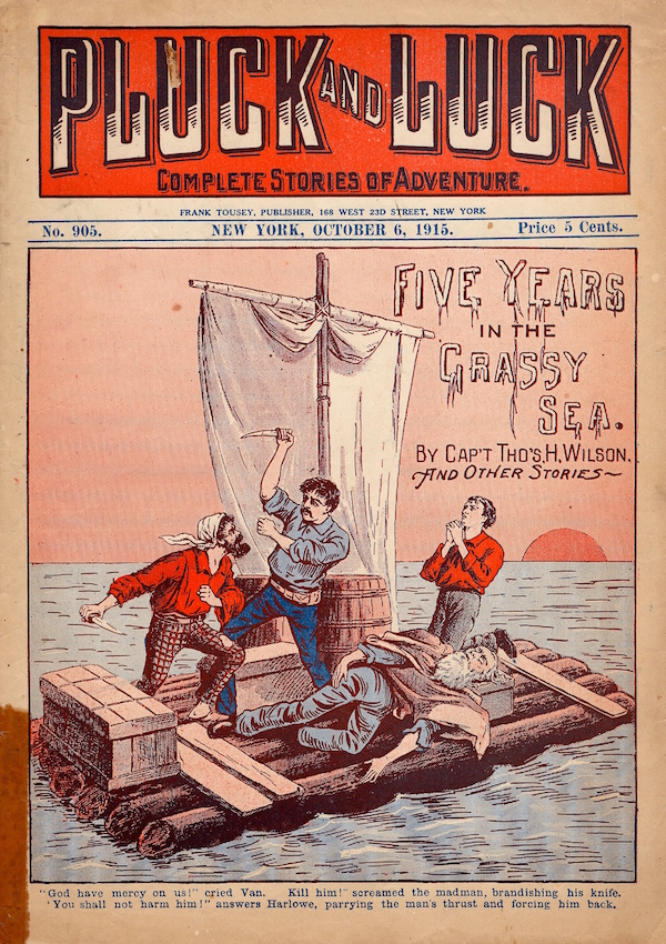 Pluck and Luck Dime Novel